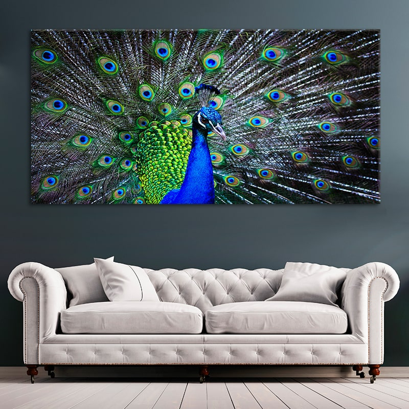 peacook canvas print cheap