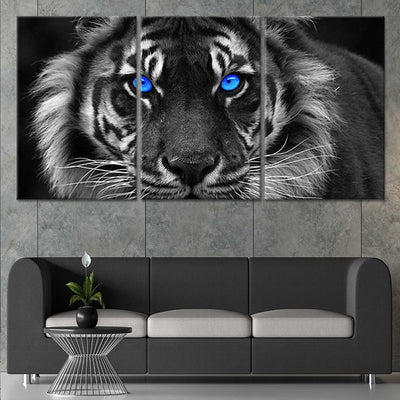 blue eyed white tiger 3 piece wall art