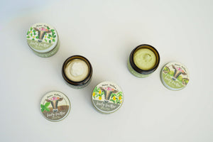 tea tallow body butter, matcha, oolong black tea, matcha green tea, jasmine green tea, earl grey tea, skincare, tea infused, tea extracts,, luxury face cream, tallow salve, whip, balm, cream, moisturizer, green beauty, texas tallow, nontoxic skincare, herbal infused oils, no essential oils, daily facial cream, grass-fed beef tallow, natural moisturizer, herbal balm, antiaging lotion, aging skin, crepey skin, wrinkle treatment