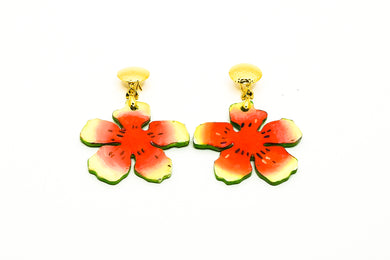 Aretes Watermelon - Passion Fruit  / Small