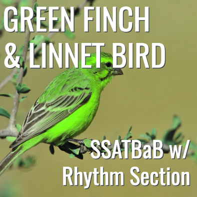 Green Finch and Linnet Bird (SSATBaB - L5)