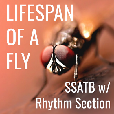 Lifespan of a Fly (SSATB - L3)