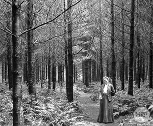 Woman Posing in Cathedral Woods New Hampshire