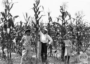 Two Young Siblings and Father Posing Together in Florida Corn Fields
