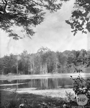 Pastoral Scene Lake Surrounded by Foliage in the Gloucester Area of Massachusetts