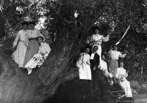 Family Photograph Group of Nine Men and Women Playfully Posing in the Branches of an Enormous Oak Tree