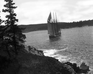 Rear View of Schooner Sailing Through Tree-Lined Islands in Gloucester, Massachusetts