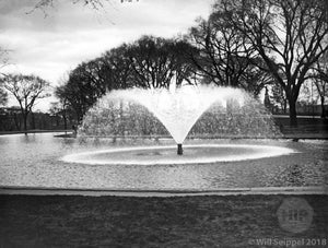 Boston Commons Fountain