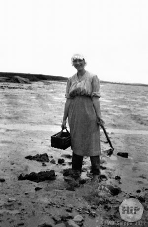 1912 Mary Gid clamming in Cape Porpoise.