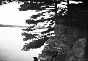 Cliff and Trees above Lake New England