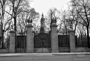 FitzRandoplh Front Undergraduate Gates to Princeton University in front of Nassau Hall