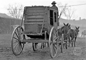 Overland Circus or Wild West Stagecoach Drawn by Four Mules