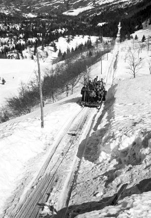 Group of Skiiers Sitting in a Large Sled as They Journey Down a Steep Hill Lined with Pine Trees