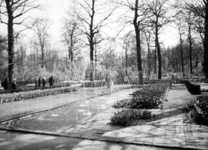 Parabolic Fountain Streamers and Garden Hedges Decorating a Charming Park in Holland, 1950s
