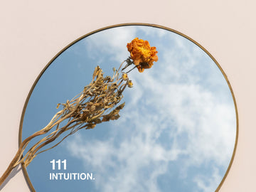 111. INTUITION