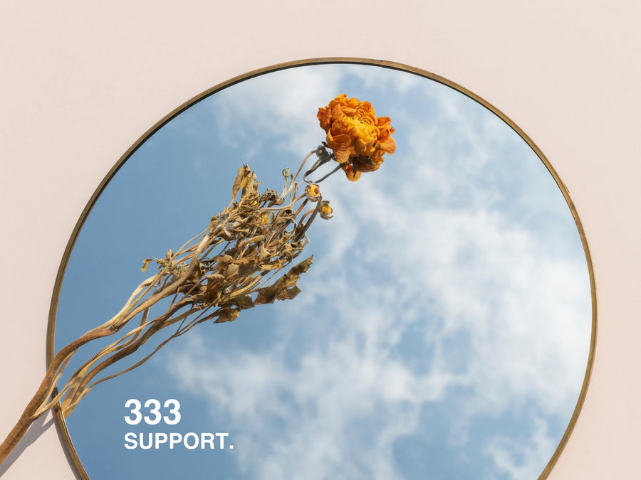 333. SUPPORT