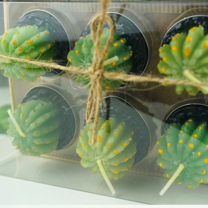 6 Barrel Succulent Cactus Tea Light Gift Box - Afroquarter