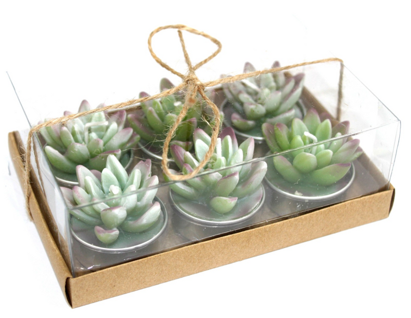 6 Succulent Cactus Tea Light Gift Box - Afroquarter