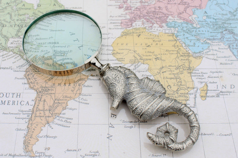 Classic Seahorse Vintage Magnifying Glasses - AQ Online