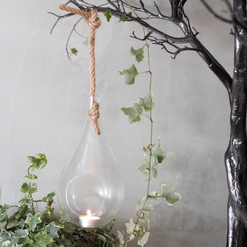 Hanging Terrarium Glass Teardrop With Rope - AQ Online