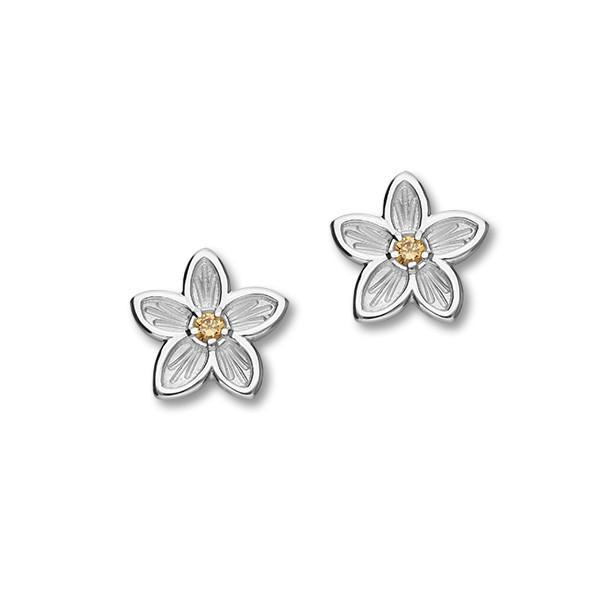 Anniversary Silver Earrings CE435