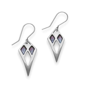 Silver Earrings EE790