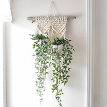 Load image into Gallery viewer, Double Macrame Wall Plant Hanger