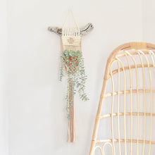 Load image into Gallery viewer, Handmade Twisted Wall Plant Hanger