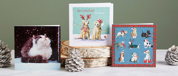 Shelter charity Christmas cards