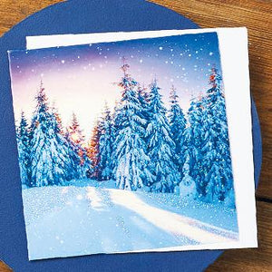 Frosty Sunset Forest Shelter Charity Christmas Cards