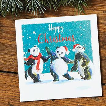 Funky Pandas Shelter Charity Christmas Cards