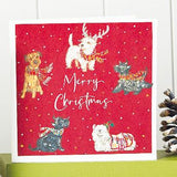 Parading Pooches Shelter Charity Christmas Cards
