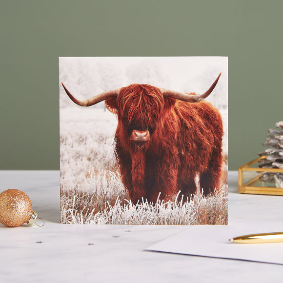 Highland Hoarfrost Shelter Charity Christmas Cards