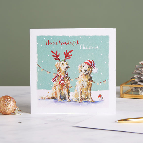 Furry Festive Shelter Charity Christmas Cards