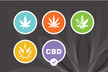 Know Your Strains