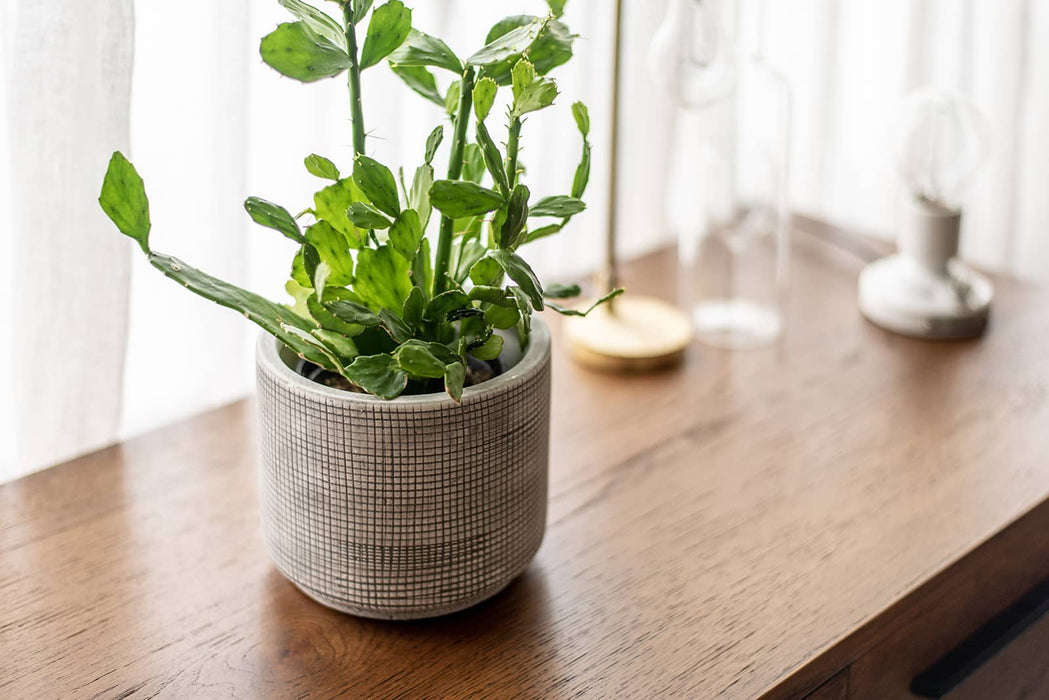 Plaid white planter pot