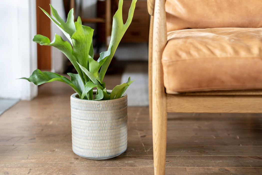 Grain planter pot