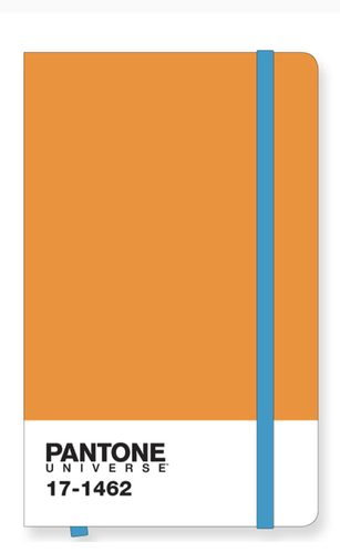 Pantone Icon Notebook Large in Flame Orange