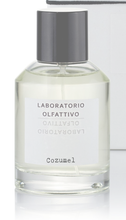 Load image into Gallery viewer, Cozumel Eau de Parfum by Laboratorio Olfattivo 100ml with Box