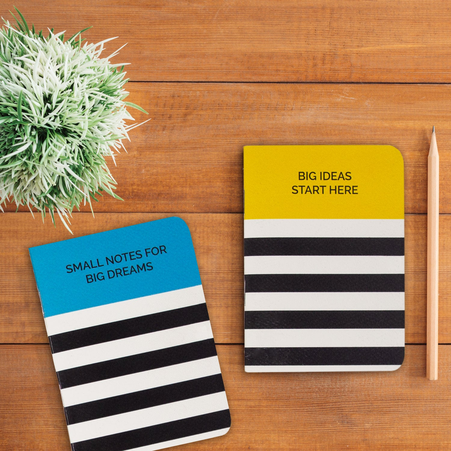 Big Ideas Pocket Book Set (2 Pcs)