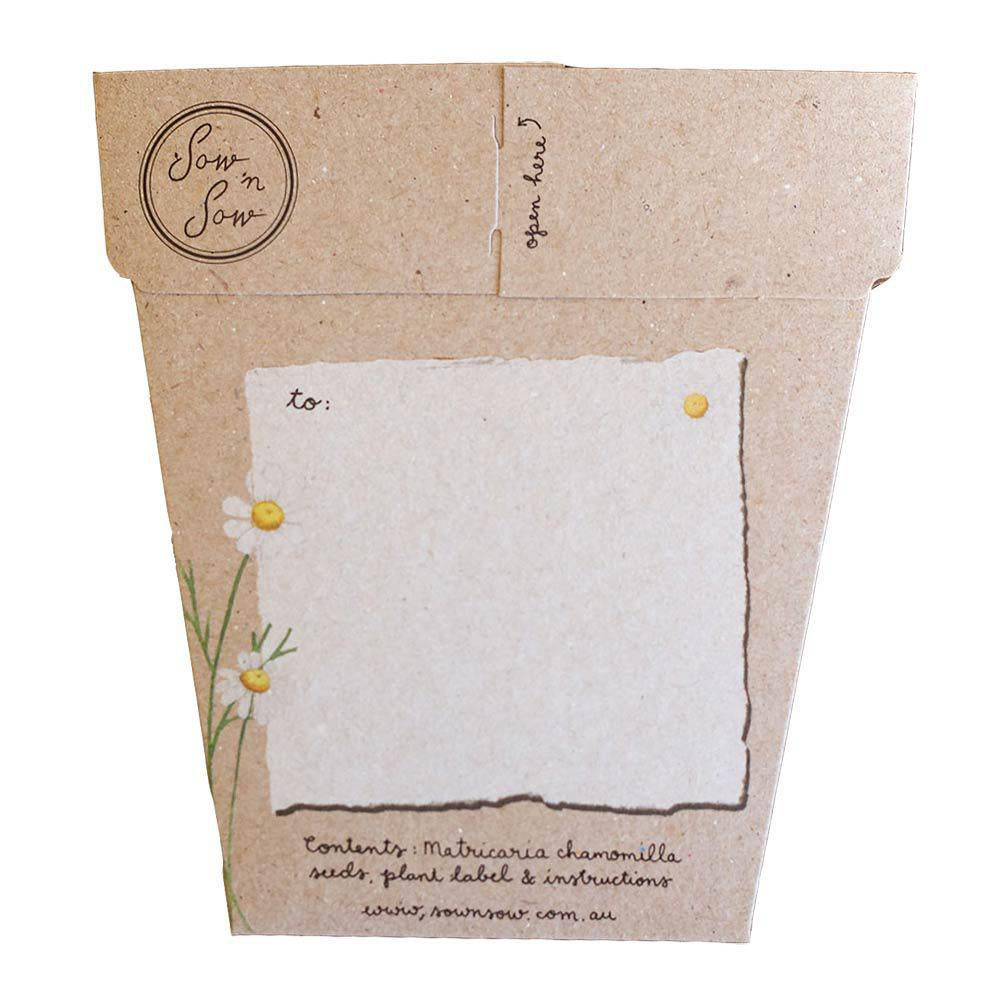 Chamomile Gift of Seeds Greeting Card Greeting Card Sow 'n Sow