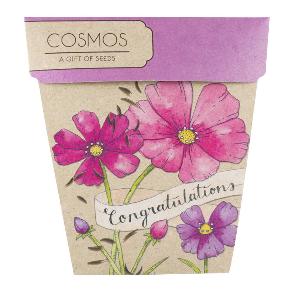 Cosmos Gift of Seeds Congratulations Card - Sow n' Sow Greeting Card Sow 'n Sow