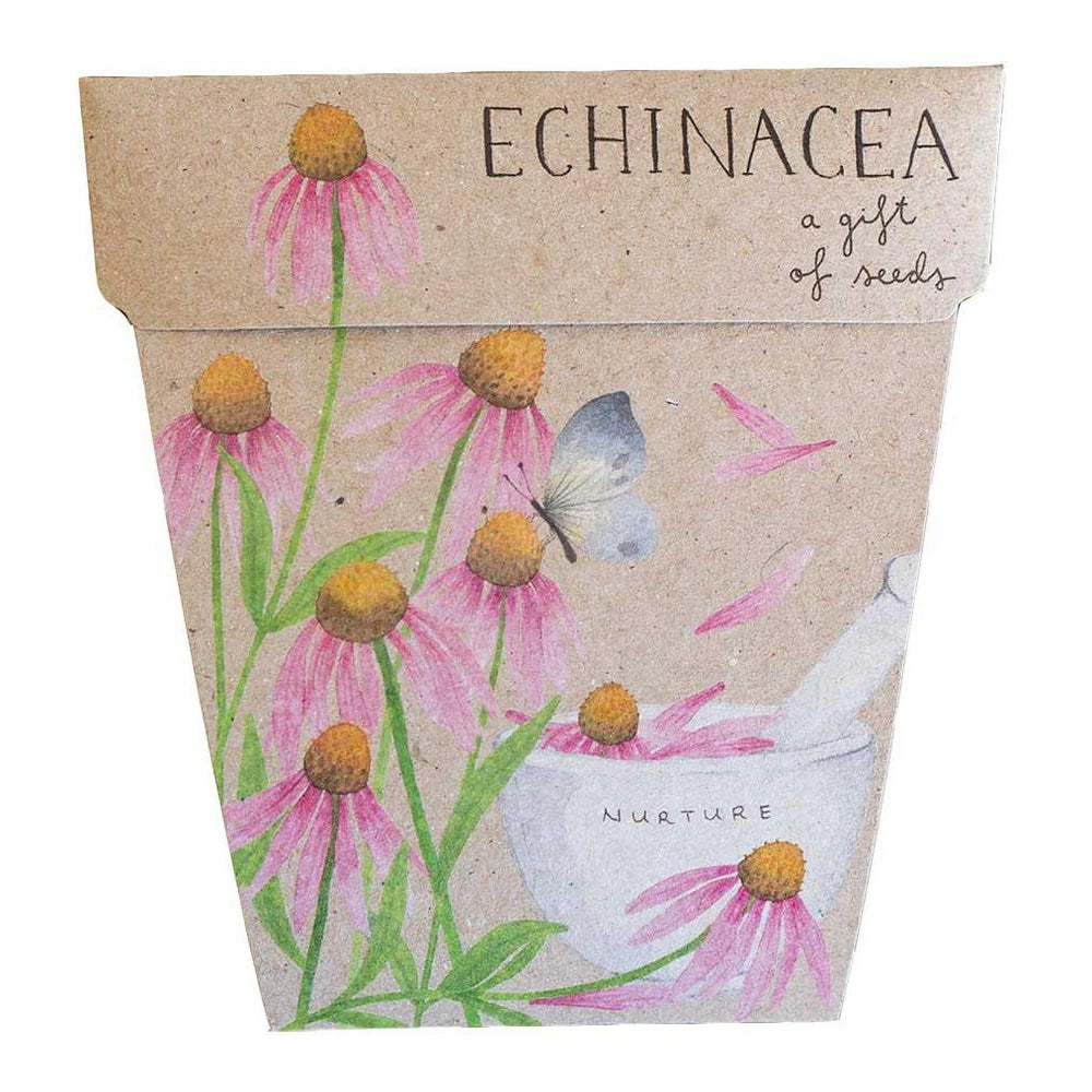 Echinacea Gift of Seeds Greeting Card Greeting Card Sow 'n Sow