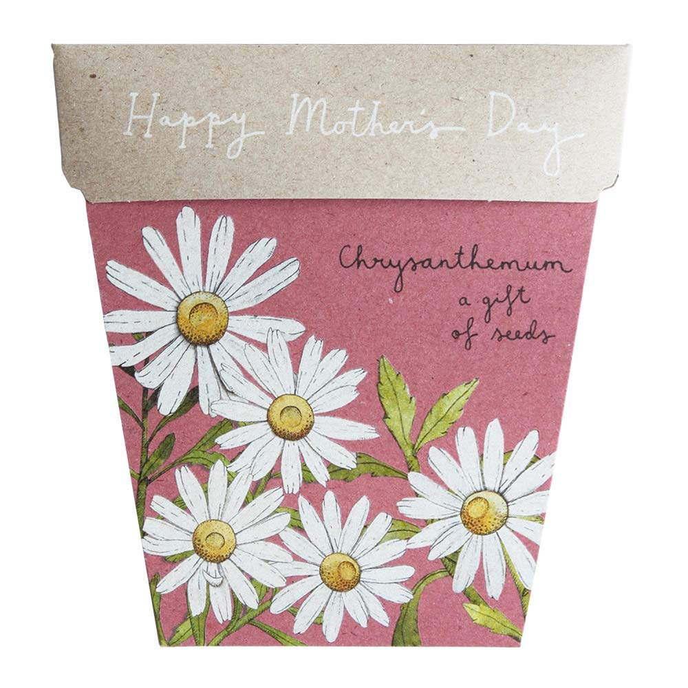 Mother's Day Chrysanthemum Gift of Seeds Greeting Card Greeting Card Sow 'n Sow
