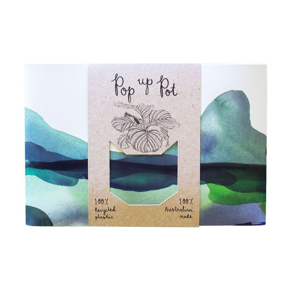 Pop Up Pot Greeting Card Sow 'n Sow Mountain