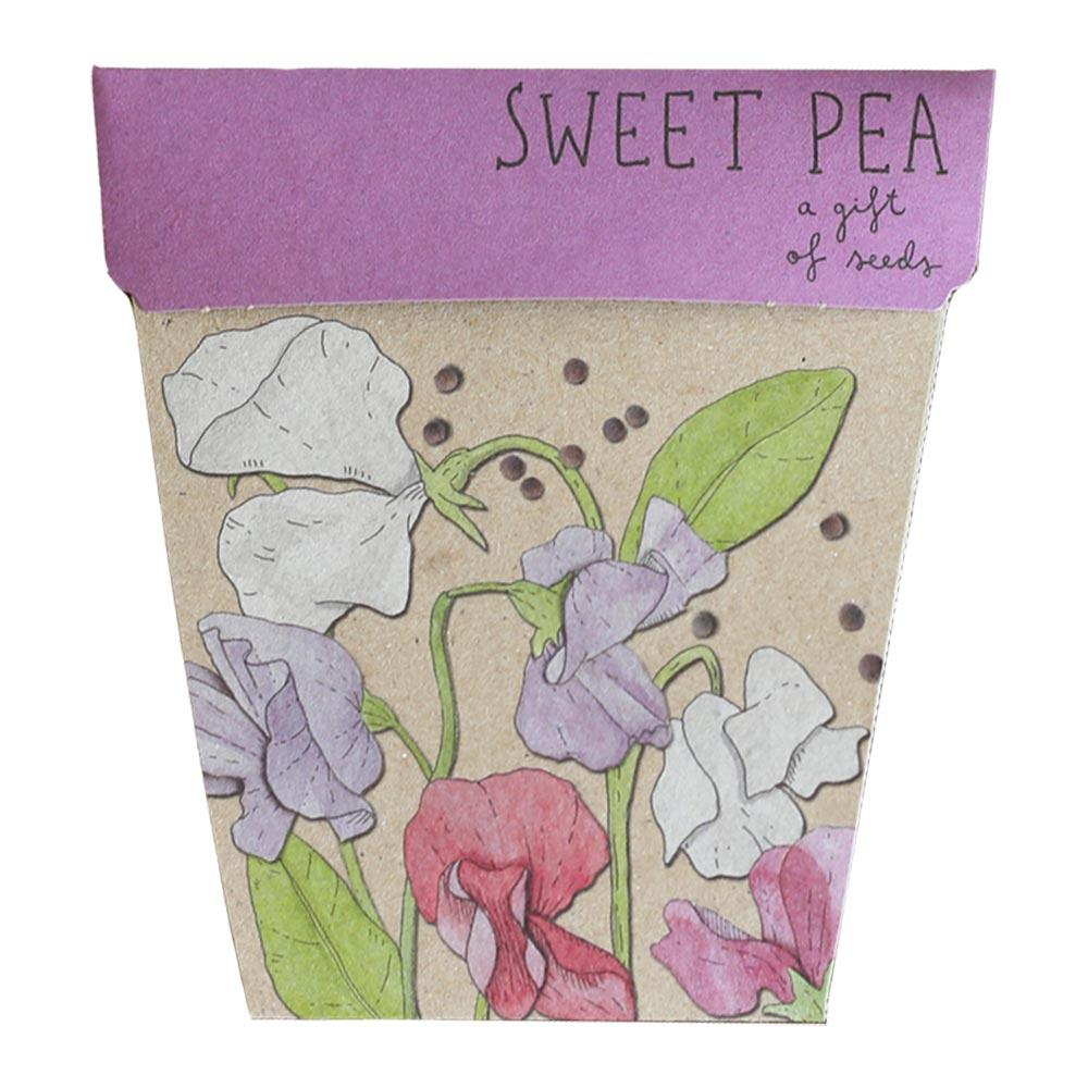 Sweet Pea Gift of Seeds Greeting Card Greeting Card Sow 'n Sow
