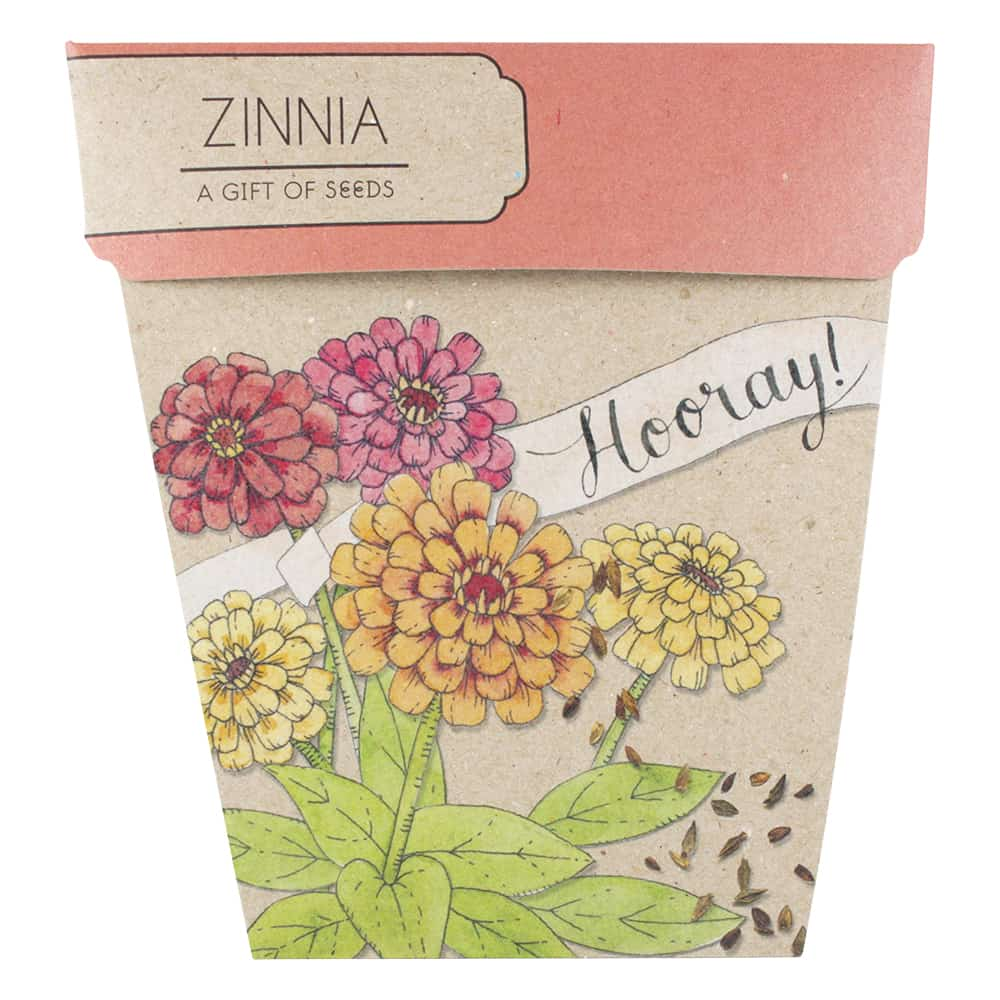 Zinnia Hooray! Gift of Seeds Greeting Card Greeting Card Sow 'n Sow