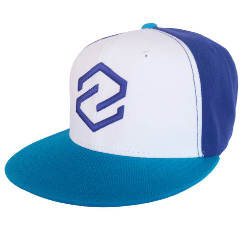 Z Logo Teal/Purple Snap Back