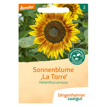 Helianthus Annuus Sunflower 'La Torre' Biodynamic Seeds - Organic and Demeter Certified