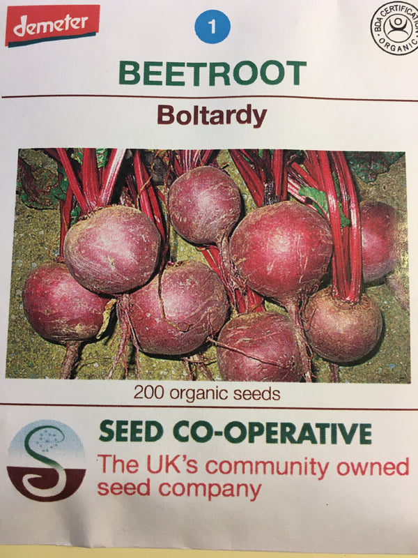 Seed Co-Operative Beetroot 'Boltardy' 200 Seeds. Biodynamic and Demeter certified